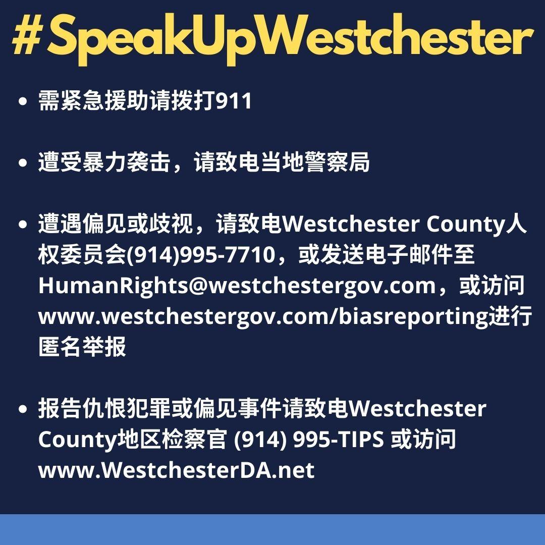 SpeakUpWestchester_Mandarin.jpg